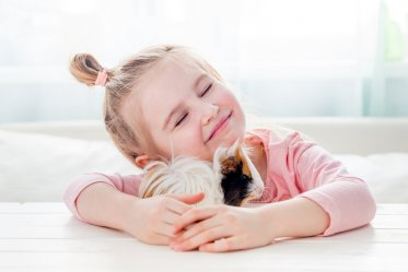 Best Rodent Pet for a Child