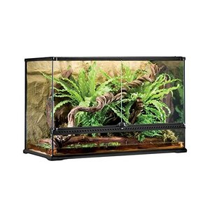 Exo Terra Large Tall Glass Terrarium
