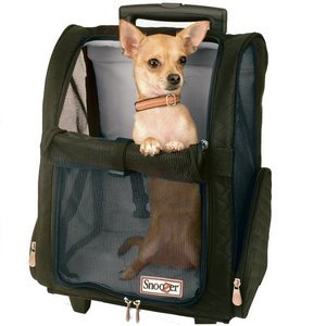 Snoozer Wheel Around 4-In-1 Pet Travel Carrier
