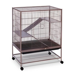 Prevue Hendryx Earthtone Dusted Rose Cage